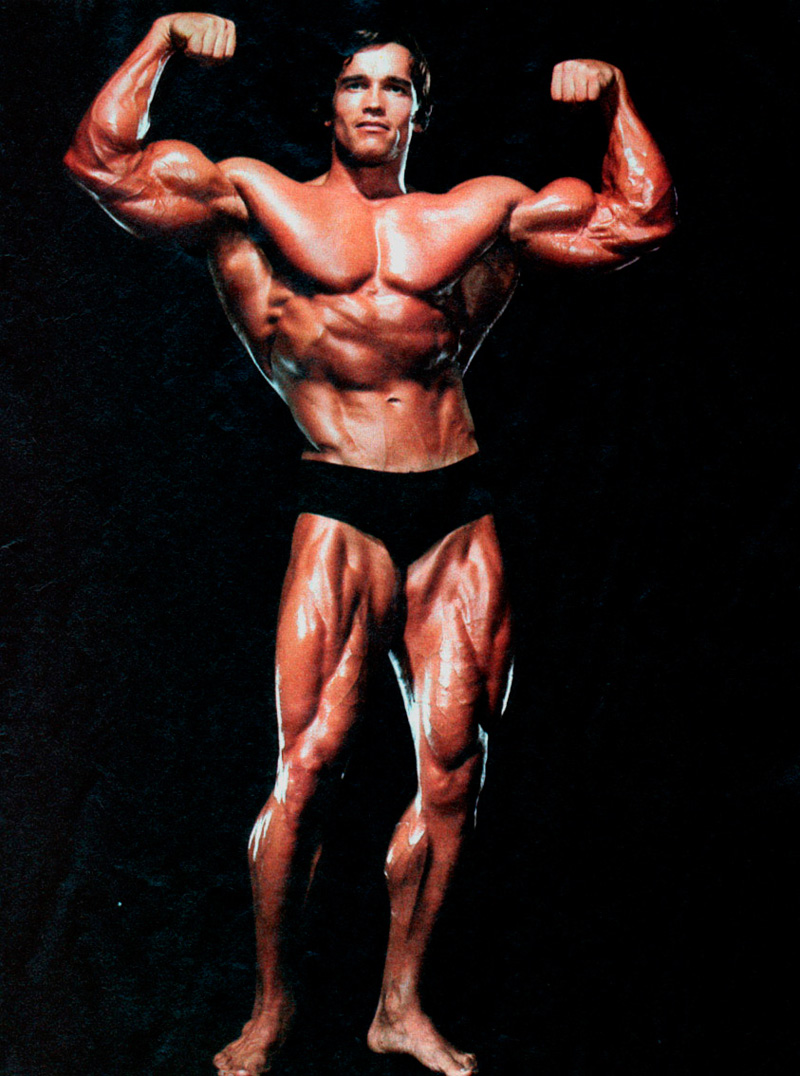 arnolds philosophy on bodybuilding A training philosophy for mass gain a training philosophy for solid mass gain by: lets say you decide to convert him to standard bodybuilding training by having.