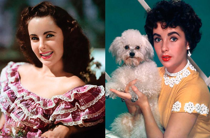 Самые красивые брюнетки Голливуда топ-40